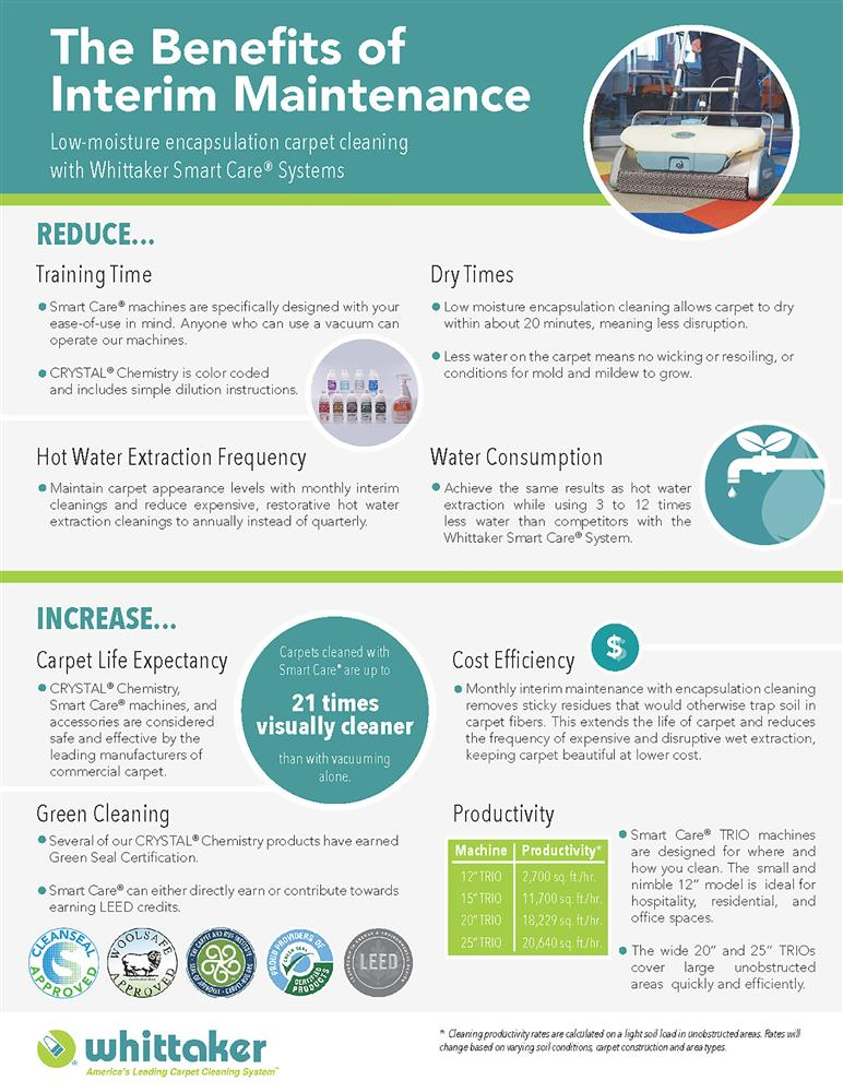 interim maintenance carpet cleaning infographic