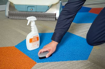 Daily Carpet Maintenance: How to Remove Carpet Stains and Spots