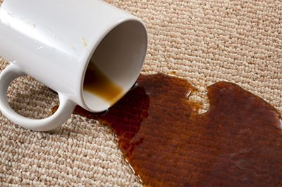 How to Identify Different Carpet Stain Types